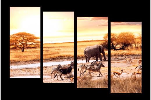 Модульная картина Африканская саванна